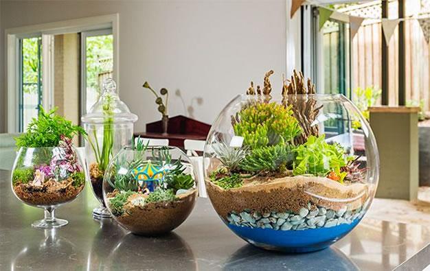 Los terrarios son una gran alternativa para darle ese color vivo a espacios interiores